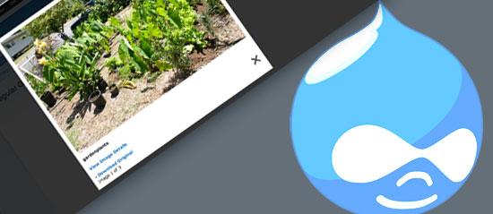 4 Steps to Building a Portfolio Website Using Drupal