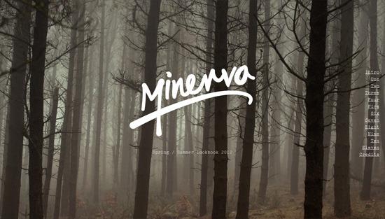 Photo background example: Minerva
