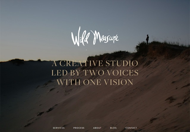 Earth-toned web design: Wild Measure