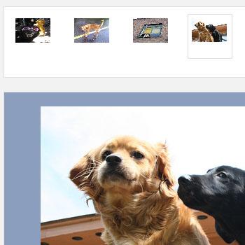 Image Gallery Using Mootools