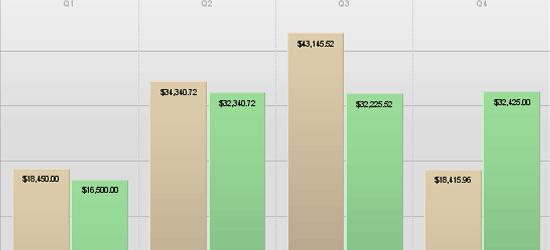 CSS Vertical Bar Graphs - screen shot.