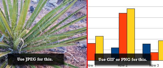 JPEG vs GIF screenshot.