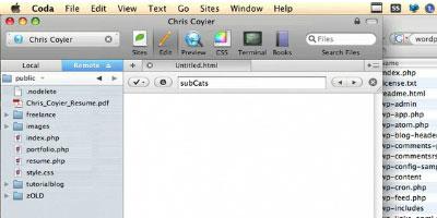 Designing for WordPress - screen shot.