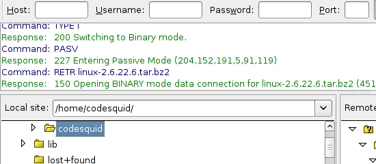 FileZilla - screen shot.