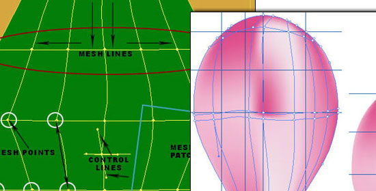 Gradient Meshes Introduction - preview.