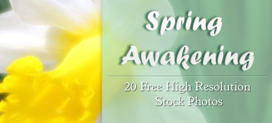 Spring Awakeing - leading image.