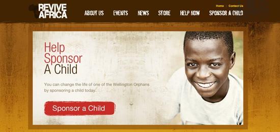reviveafrica.com