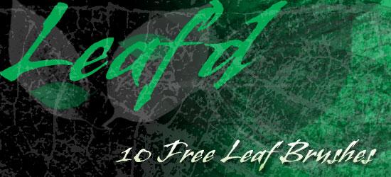 Leaf'd: 10 Free High-Res Photoshop Leaf Brushes