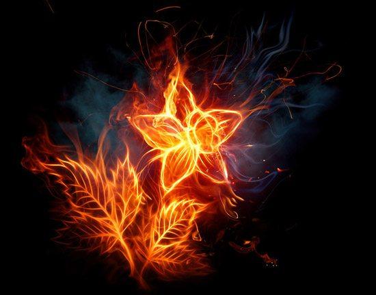Fire flower..
