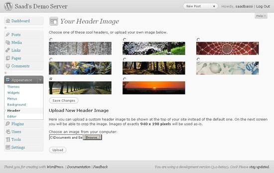 WordPress 3.0 Headers