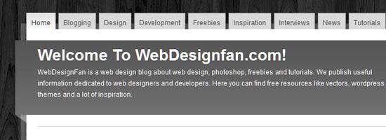 WebDesignFan