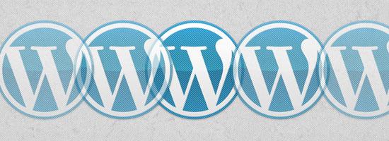 A Guide to Premium WordPress Themes