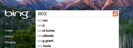 SEO for Bing Versus Google
