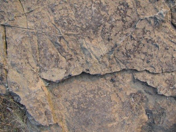 Stone Texture 02