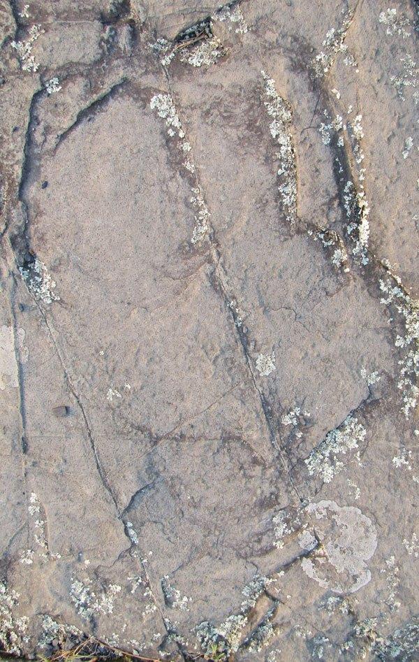 Stone Texture 03