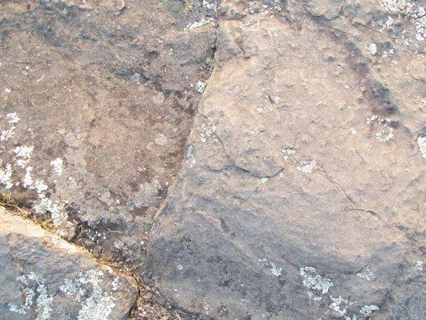 Stone Texture 04