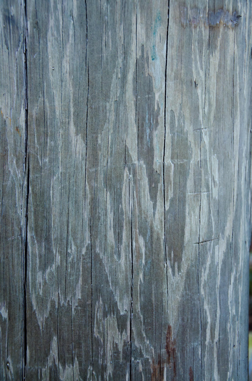 Wood Grain Texture wood grain: texture pack