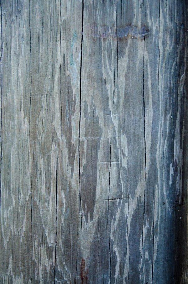 Wood Grain Texture 5