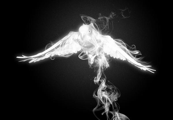 Create Smoke Around the Bird