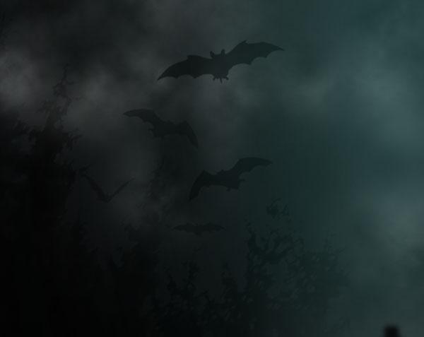 Add Bats