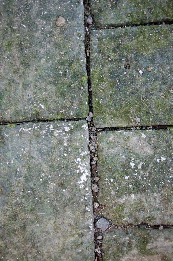 Rocky Pavement Texture 03