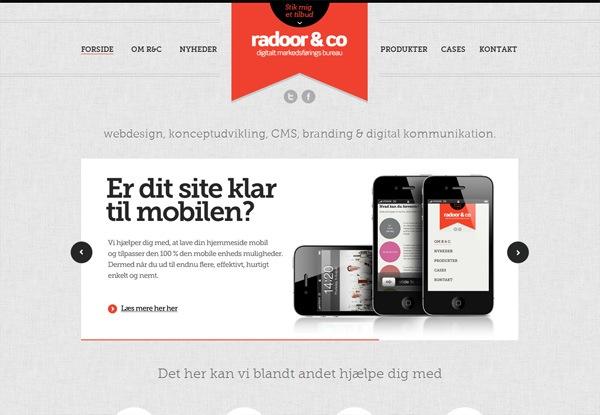 Gray website design example: Radoor & Co.