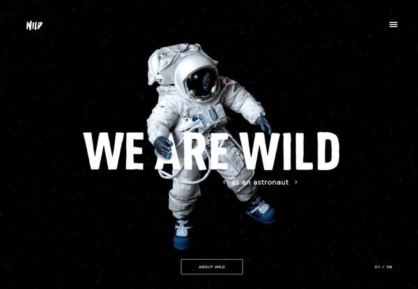 A screenshot of a black web design named WILD