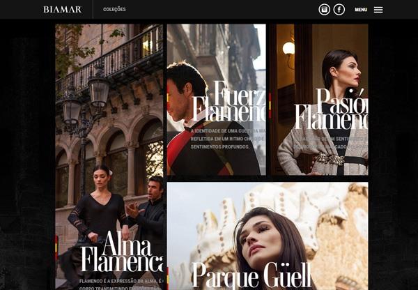 Dark web design example: Biamar