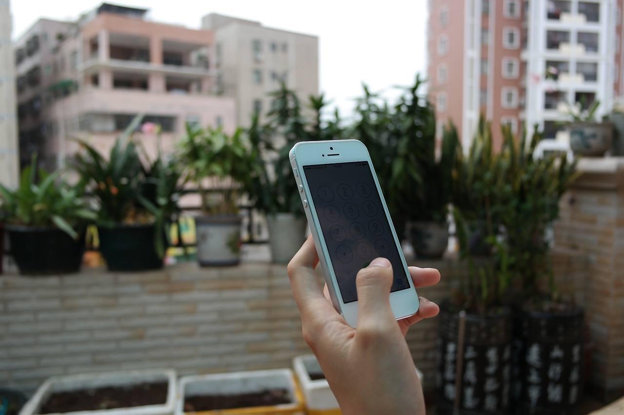 Mobile Phone (2)