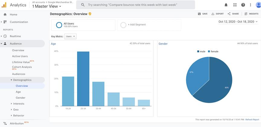 Google Analytics Demographics Report