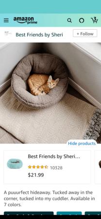 Amazon Posts example detail: Best Friends