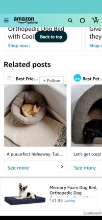 Amazon Posts example: Best Friends