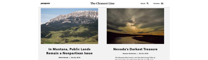 A screenshot of Patagonia's blog